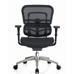 כסא ERGO FIT