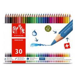 עפרון צבעוני CARAN DACHE סט 30