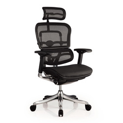 כסא מנהל ERGOHUMAN PLUS משענת ראש